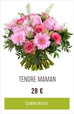 Bouquet Tendre Maman